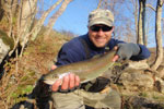 Beautiful Hold-Over Trout, Little River Virginia