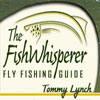 Guide Tommy Lynch
